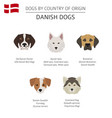 dogs by country of origin danish dog breeds vector image vector image