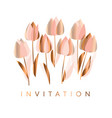luxury abstract tulip flowers vector image vector image