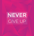 never give up motivational poster vector image vector image