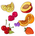 set of fruits on white background vector image vector image