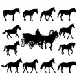 horse silhouettes isolated on vector image