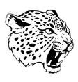 jaguar vector image vector image