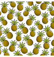 natural pineapple fruit background icon vector image vector image