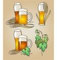 set beer vector image