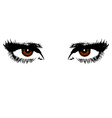 womens brown eyes vector image vector image