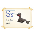 A letter S for seal vector image vector image