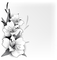 Background lily in graphics vector image vector image