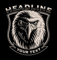 black and white of eagle head vector image vector image