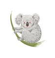 cute cartoon character koala bear sitting vector image
