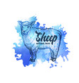 hand drawn sketch sheep natural meat background vector image vector image