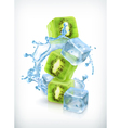 Kiwi with ice cubes and water splash icon vector image vector image