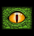 scary eye a reptile image vector image