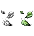 sketch of falling leaves vector image vector image