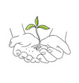 hands with young plant shoots save nature sketch vector image