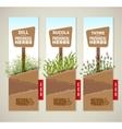 Herbs de Provence banners vector image vector image