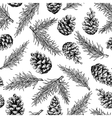 Pine cone and fir tree seamless pattern Botanical vector image vector image