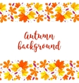 Autumn lettering background Autumn background vector image vector image