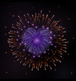 beautiful red heart-firework romantic firework vector image vector image