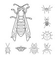 insect and fly icon set of vector image