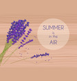 purple rustic flowers with summer in the air words vector image vector image