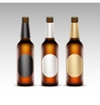 Set of Transparent Bottles with labels Light Beer vector image vector image