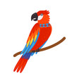 colorful tropical parrot beautiful bird with vector image