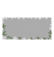 frame from green fir branches border pattern vector image