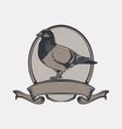 vintage emblem pigeon vector image vector image