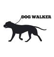 dog walker logo design canine animal black icon vector image