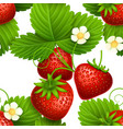 plant seamless textures with eating vector image