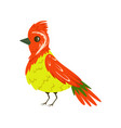 bright colorful bird with a tuft vector image vector image