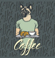 cat with croissant and coffee vector image vector image
