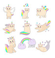 small angelic kitten with a rainbow vector image vector image