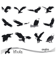 collection of silhouettes of eagles vector image vector image