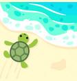 cute baturtle on beach vector image