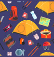 expedition equipment seamless pattern camping and vector image