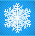 isolated snowflake with 3d effect design vector image vector image