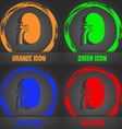 Kidney icon Fashionable modern style In the orange vector image vector image