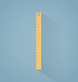Ruler flat vector image