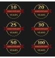 Anniversary label set vector image