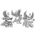 Bird Phoenix three vector image