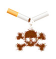 broken realistic cigarette with tobacco leaves in vector image