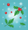 christmas and new year holly berry icon collection vector image vector image