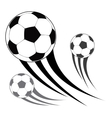 Isolated soccer balls vector image vector image