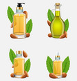 almond nut oil bottle set realistic vector image