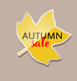autumn sale banner with yellow fall tulip tree vector image vector image