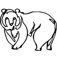 bear africa continuous line vector image