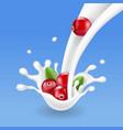 cranberry falling in milk splash vector image vector image