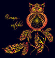 dream catcher owl dark background vector image vector image