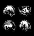 furious boar wolf panther and eagle head sport vector image vector image
